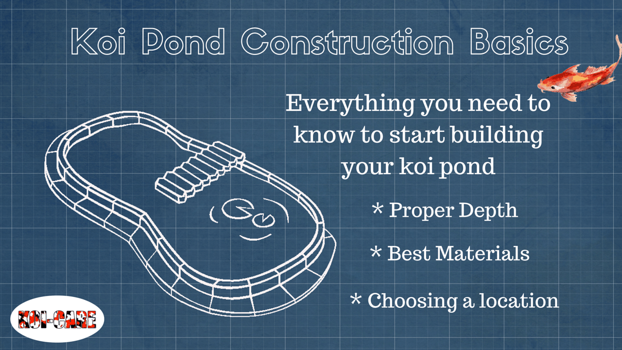 Koi pond construction basics 2 for Koi pond size