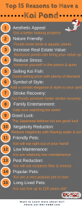Top 15 Reasons to Have a Koi Pond