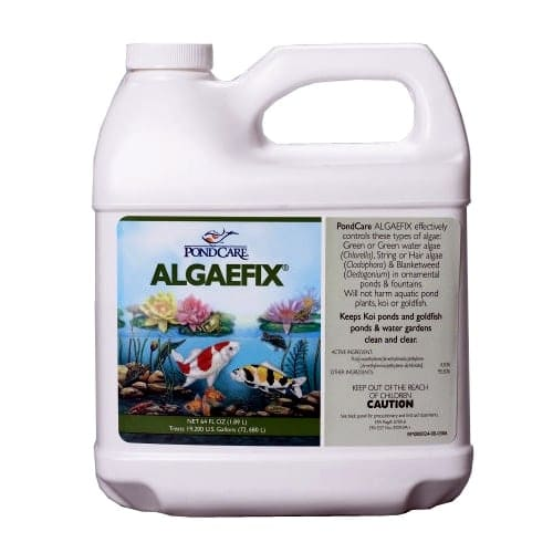04169-algaefix-64oz.