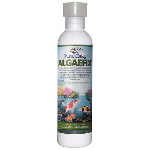 81691-Algaefix-8-oz.