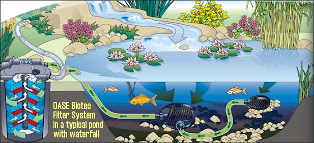 Submersible pump and external filtration for Koi pond system
