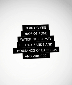 whats in a drop of pond water