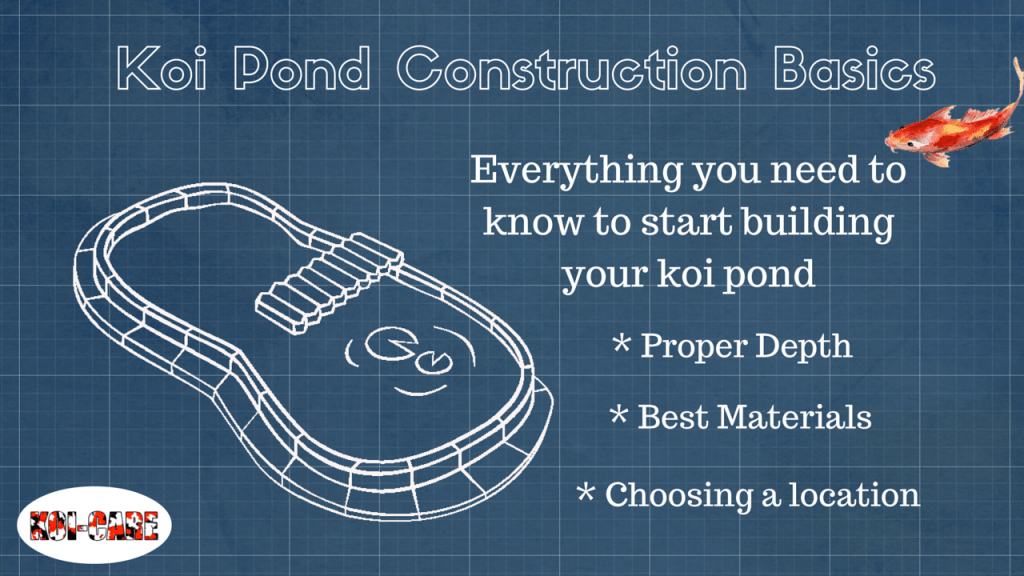 Building Your Koi Pond: Learn the Basics to Get Started