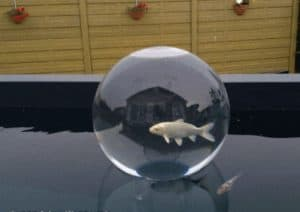 koi observation sphere