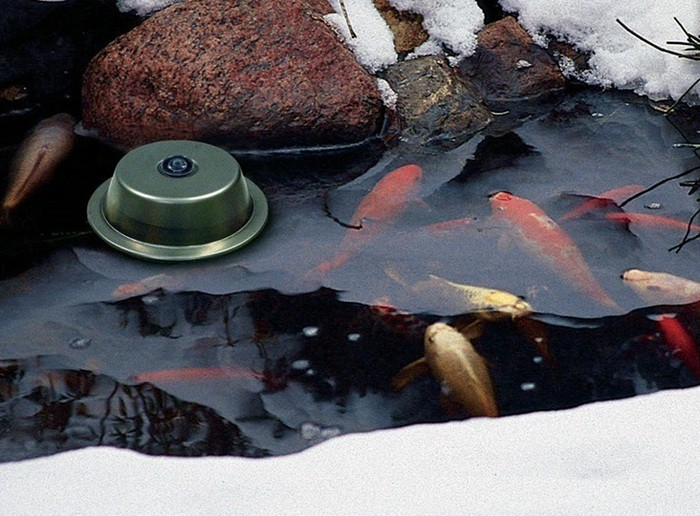 Aquascape 300 watt de-icer (in frozen pond 1)