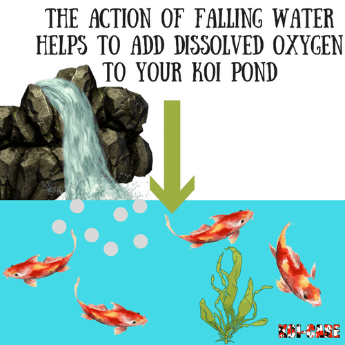 5 things needed for koi pond koi fish painting koi fish for What do you need for a koi pond
