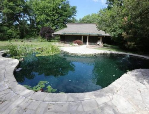 Fill your senses during Wichita's annual Water Garden Tour (including koi!)