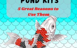 koi Pond Kits