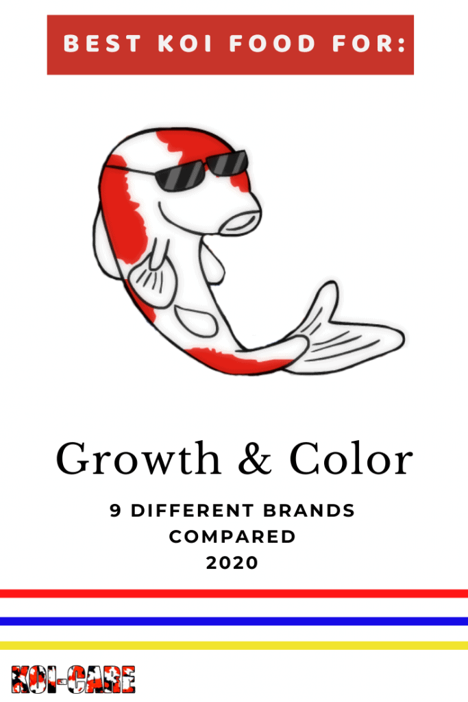 Best koi food for growth and color